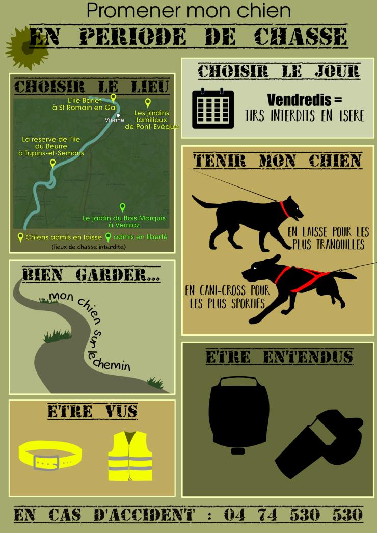 chasse et chien